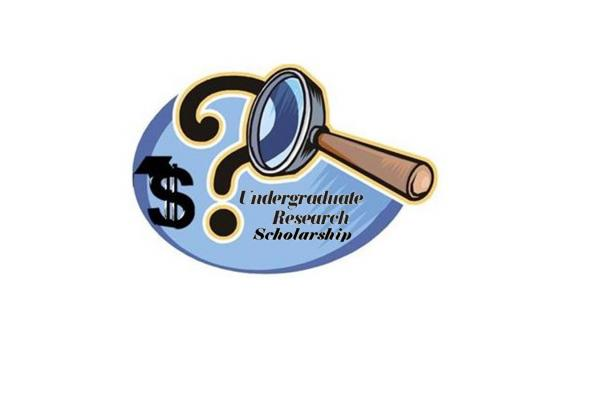 Undergraduate Research Scholarship